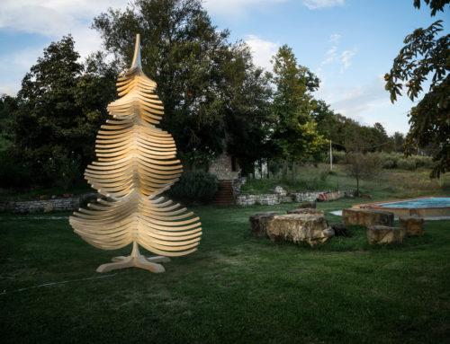 Weihnachtsbaum ALBERT schenkt dir ein Wochenende in Umbrien!